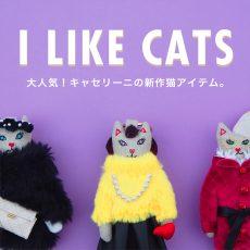 【topics】大人気!キャセリーニの新作猫アイテム。